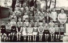 1950-Stev_Primary